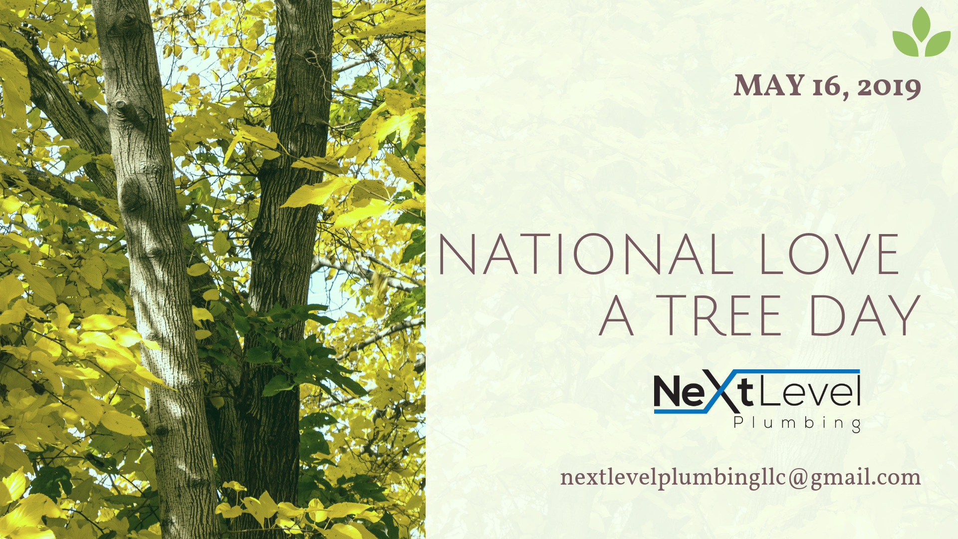 Love a Tree Day! (May 16th)