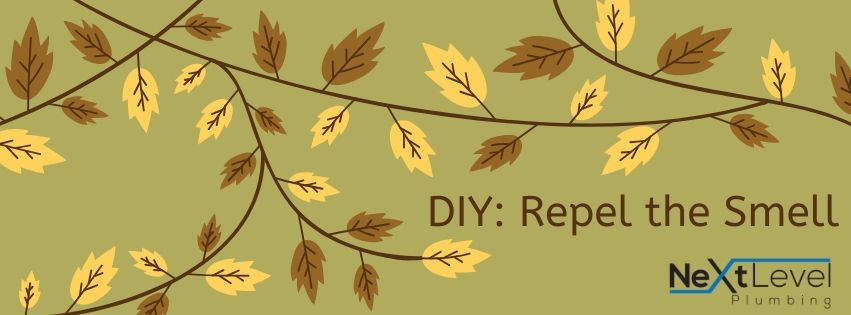 DIY: Repel the Smell!