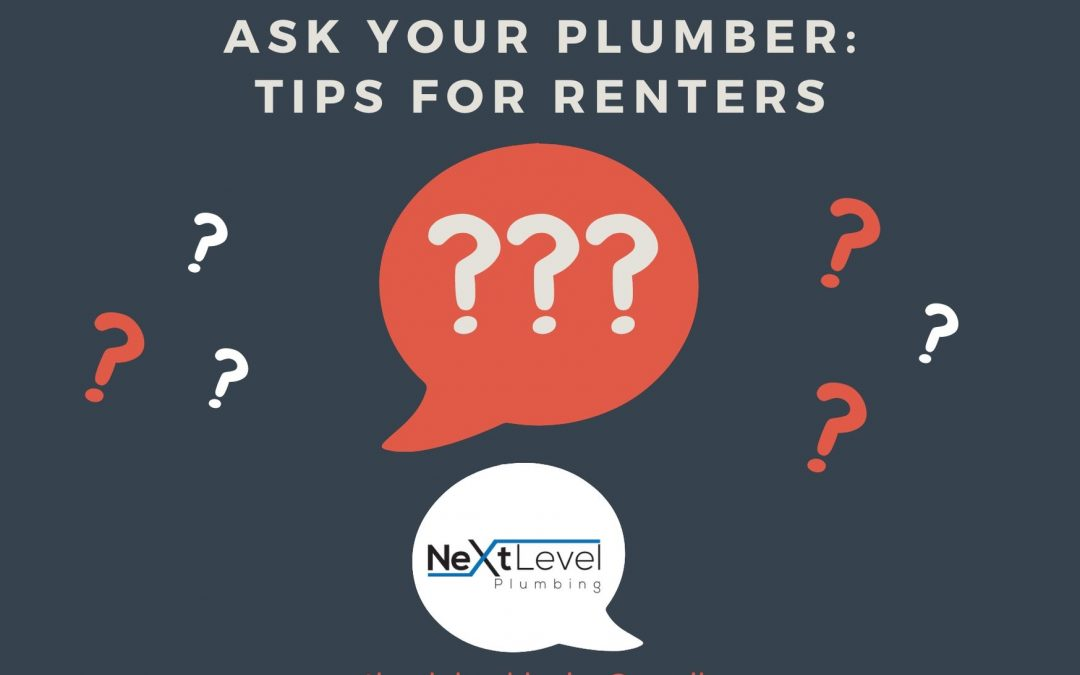 AYP: Plumbing Tips for Renters